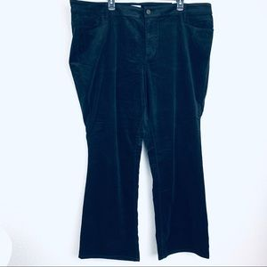 Loft bootcut Women Pants. Size 24W. NWT